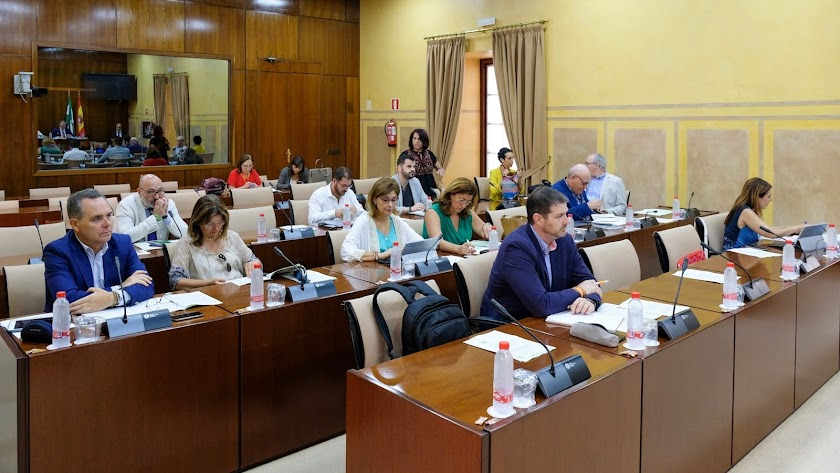 Comisión de Fomento del Parlamento de Andalucía.
