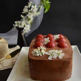 Chocolate raspberry cake by Alina Vicu - Food & Drink Candy & Dessert ( chocolate, sponge, ganache, raspberry, milk, jelly,  )