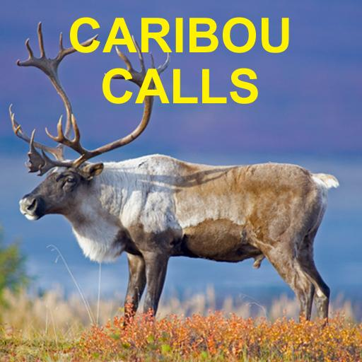 Caribou Calls for Hunting- screenshot