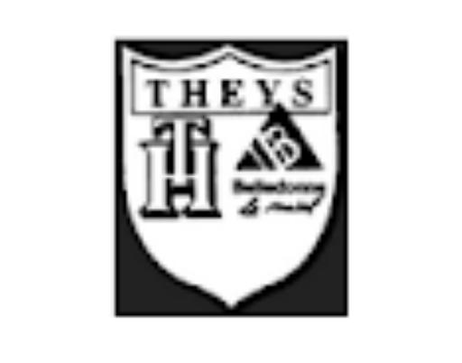 logo lien theys