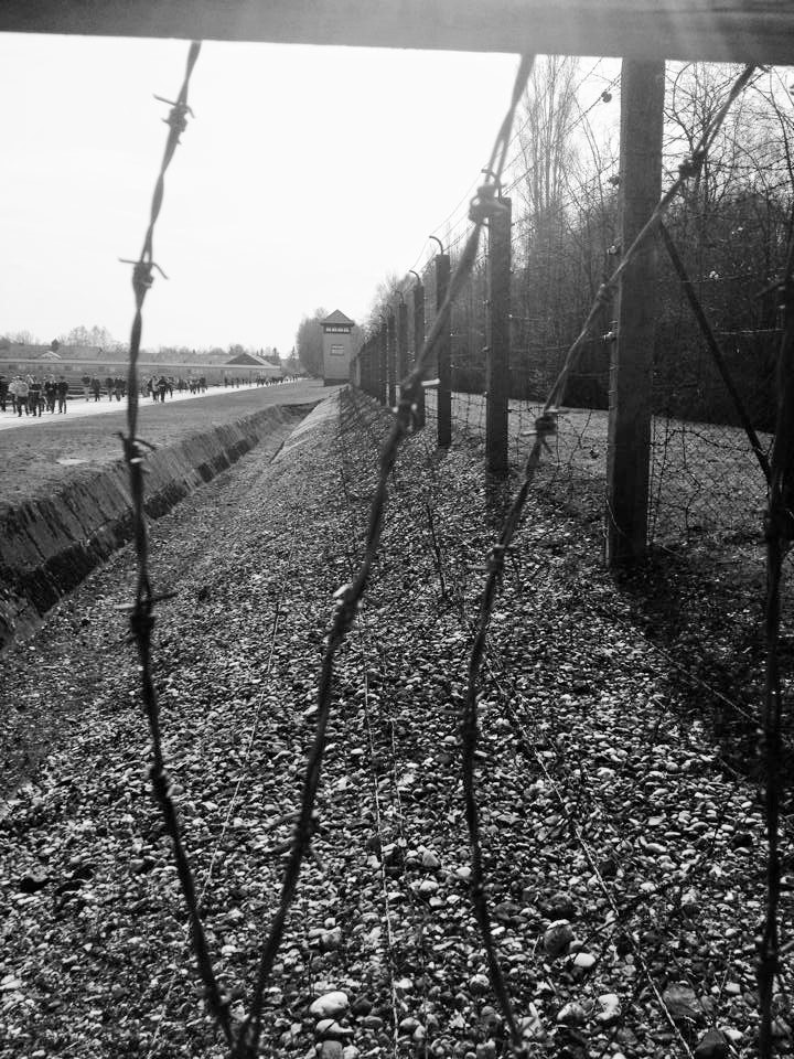 Dachau di cla_bu
