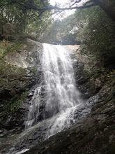 Photo: 対馬一の滝 鳴滝