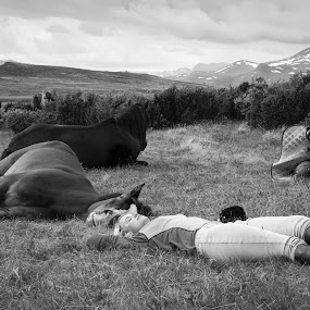 Sleepy horse, sleepy rider by Andy Boyce - Animals Horses ( rider, mountains, b&w, horses, black and white, horse, sleepy, sleep, norway )