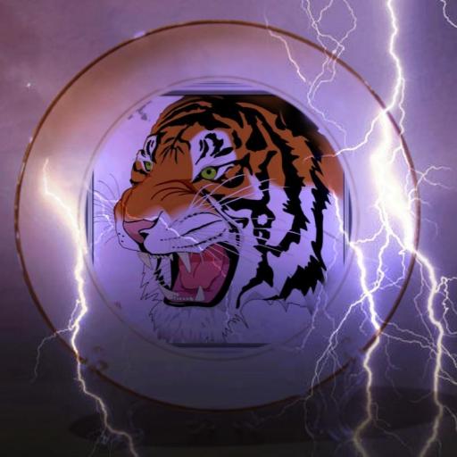 Tiger Browser 4G