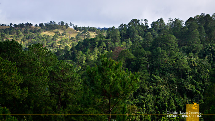 Maligcong Landscape