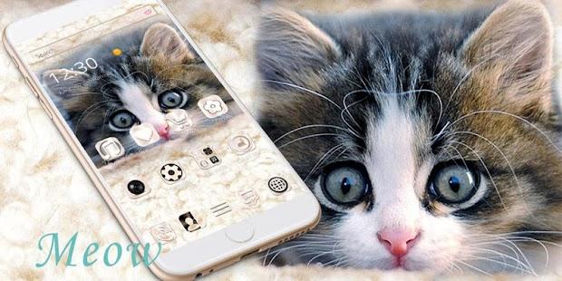 Love Kitty theme – fluffy cat - náhled