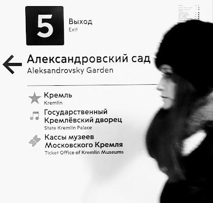 Attraversando Mosca di steconte