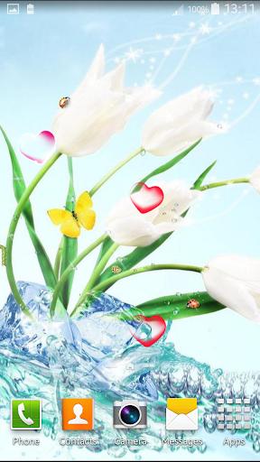 玩免費個人化APP|下載花卉动态壁纸 app不用錢|硬是要APP