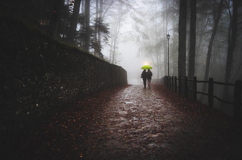 L'ombrello giallo di E l i s a E n n E