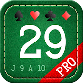 29 Card Game Pro