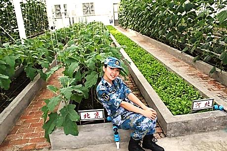 Trung Quốc công bố hình ảnh trồng rau, nuôi lợn trên đá Chữ Thập ...