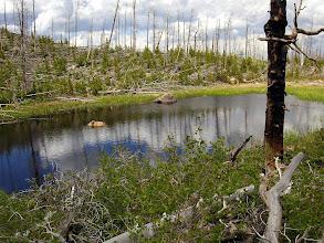 Photo: Surprise lake