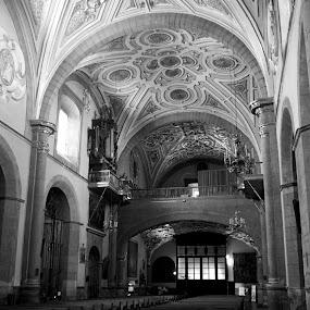 Church at Puebla III by Cristobal Garciaferro Rubio - Buildings & Architecture Other Interior ( interior, catholic, building, bench, church, black and white, puebla, dome, monotone )