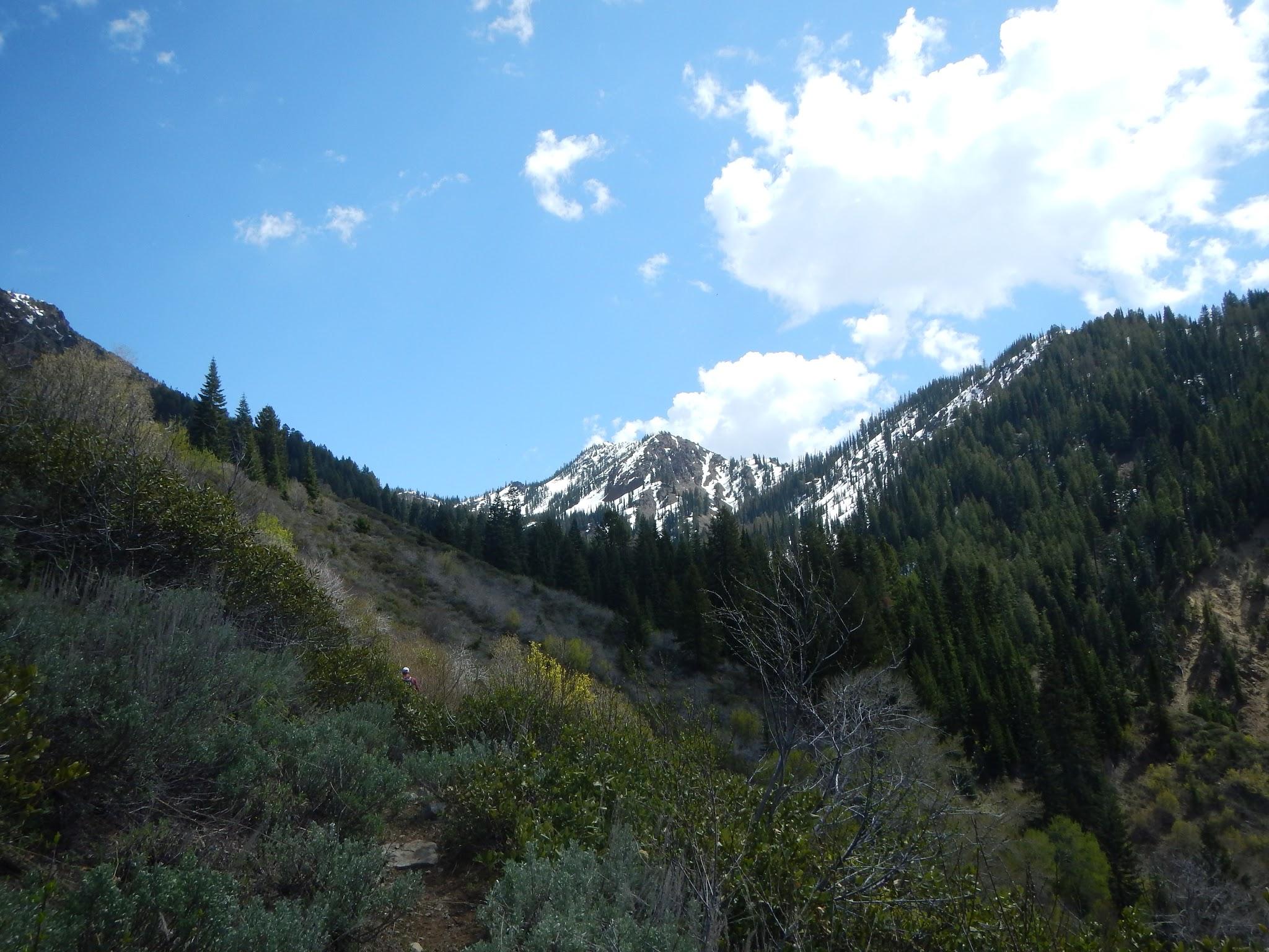 Photo: Snowy mountain views