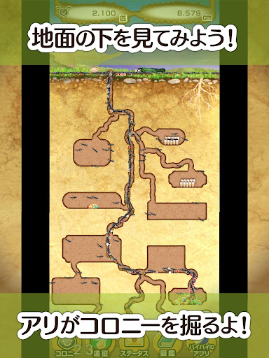 模擬必備免費app推薦|アリの巣コロニー - ほのぼの観察育成ゲーム!線上免付費app下載|3C達人阿輝的APP