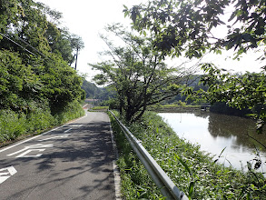 池沿いを進む