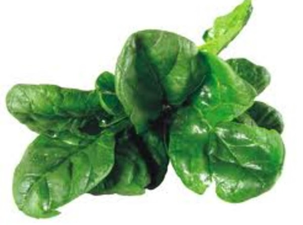 When it comes to fat burning for weight loss, greens are low carb foods...