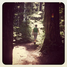 Photo: Walking a forest trail #intercer #green #trail #nature #instanature #instalife #park #tree #trees #path #life #woman #walk #grass #health #air #fresh #scene #scenery #forest - via Instagram, http://instagr.am/p/PLOYFaJfn9/