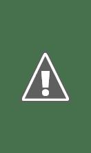 Photo: 1908 , Mt Airy in Philadelphia