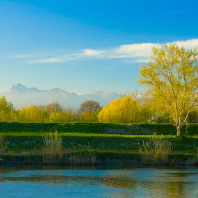 Summer by Victor Mukherjee - Landscapes Prairies, Meadows & Fields ( hills, tuscany, europe, tree, pisa, italy, river )