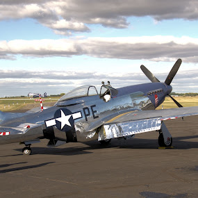 Mustang Late Afternoon by Ron Malec - Transportation Airplanes ( north american, mustang, p-51, merlin )