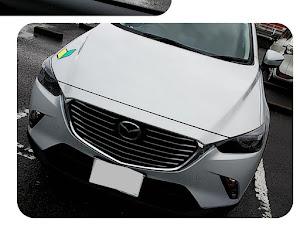 CX-3 DK5FW XD PROACTIVE セラミックメタリック 2WD 6EC-ATのカスタム事例画像 Kumi...さんの2019年01月20日20:46の投稿