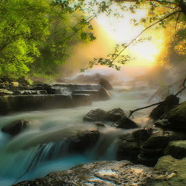 MISTY MORNING CASCADE by Dana Johnson - Landscapes Waterscapes ( sunrise, falls, creek, summer haze, waterscape, landscape, mist, morning )