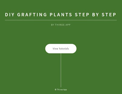 DIY Grafting Plants Step By Step - náhled