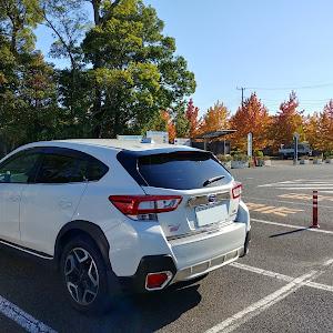 XV GT7 2.0i-S 2017年式のカスタム事例画像 ミズヲさんの2020年10月25日21:07の投稿