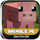 Animals PE Mods For MC