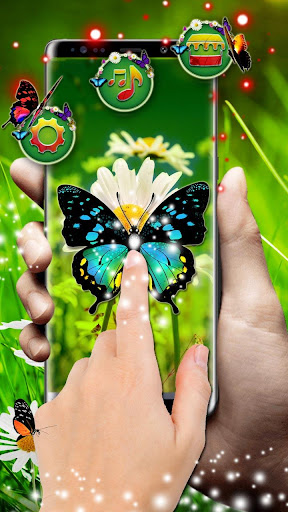 3d colorful butterfly theme ss2