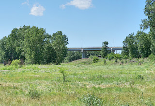 Photo: On our way the the North Star Cave, we look back across the nature sanctuary toward Kellogg Boulevard Bridge.