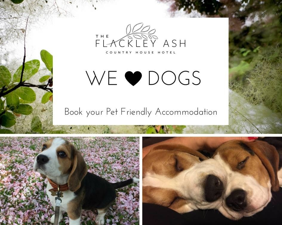 Flackley Ash Hotel - we love dogs