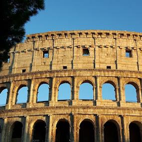 Roma. by Luis DuarteSantos - Uncategorized All Uncategorized