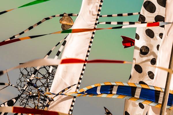 Kandinskij in the wind di Marcello Zavalloni