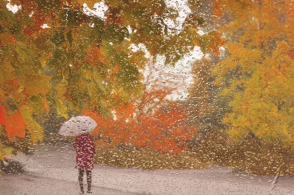Pioggia e colori di AlfredoNegroni
