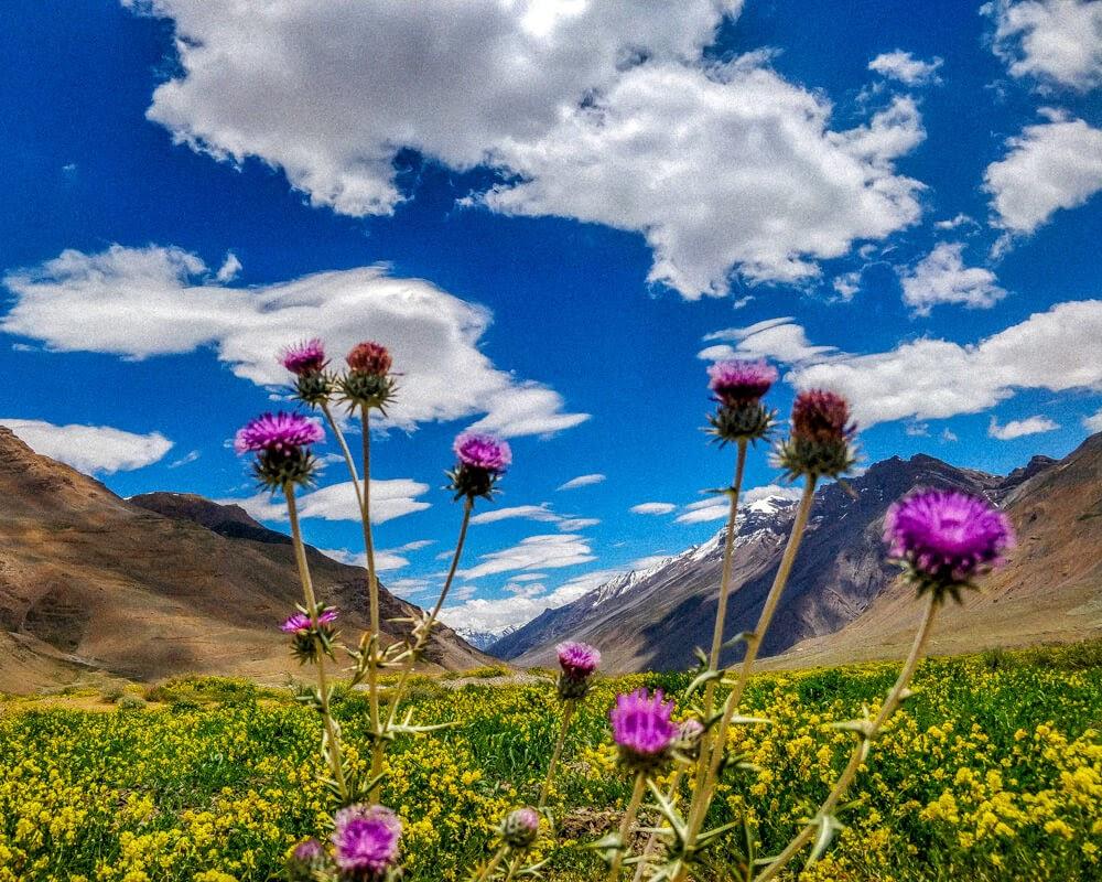 kaza+Spiti+valley+himachal+pradesh