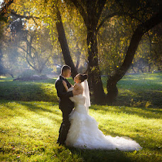 Wedding photographer Yuliya Voronova (JuliyaV). Photo of 13.11.2014