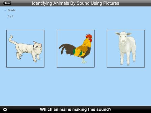 Identifying Animals Pic Lite