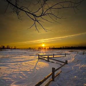A winter fenced JPEG.jpg