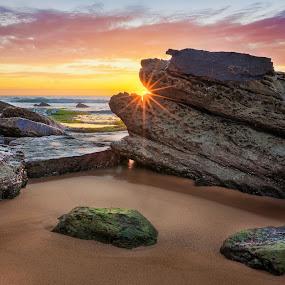 Turrimetta Pano by Rebecca Ramaley - Landscapes Sunsets & Sunrises ( sunburst, turrimetta beach, australia, sunrise, rocks, sydney,  )