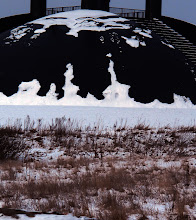 Photo: Elia i sne, Birk Centerpark, Herning