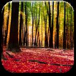 Autumn Landscape Wallpaper Icon