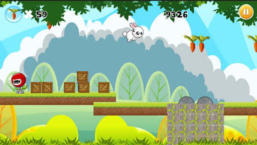 Bunny Carrot Adventure