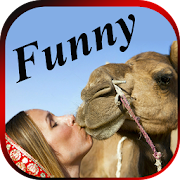 App FUNNY VIDEOS : Latest Indian Comedy Clips App 1.1 APK for iPhone