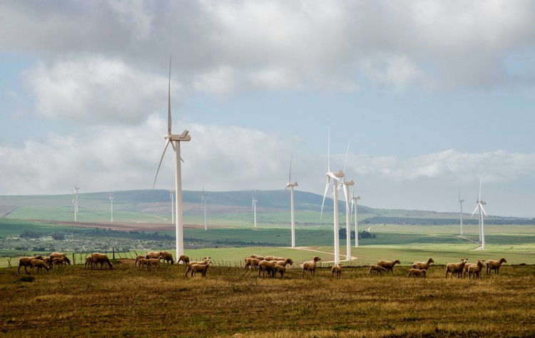 The West Coast One wind farm near Vredenburg has operated since 2015. Environment minister Barbara Creecy says the 'wake effect' on this facility of a proposed new neighbouring wind farm must be investigated before it can also be approved.