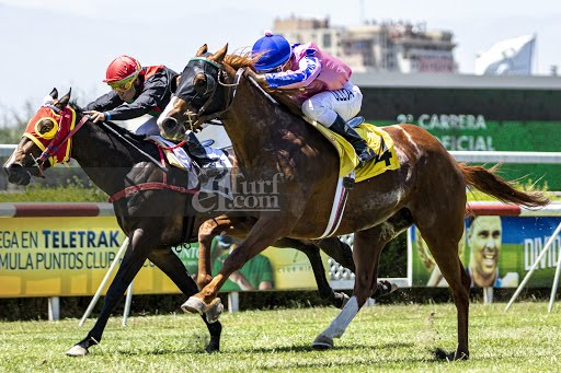 Full de Reyes (Lookin At Lucky) brilló en Condicional (1300m-Pasto-CHS). - Staff ElTurf.com