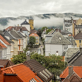 Bergen by Richard Michael Lingo - City,  Street & Park  Neighborhoods ( city, street, norway, homes, neighborhood, bergen,  )