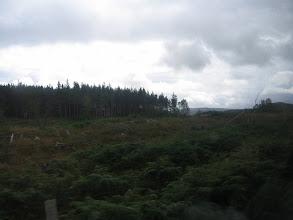 Photo: Wäldern....