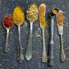 Spice Utiliity by Jim Downey - Food & Drink Ingredients ( cinnamon, ginger, turmeric & caraway seeds, pepper, nutmeg )